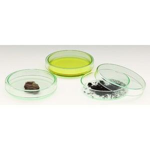 Windaus Placa Petri de cristal con tapa, 100mm