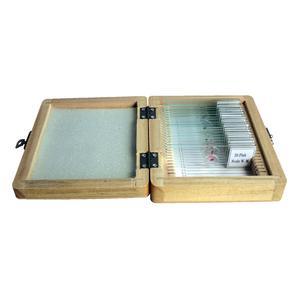 Omegon Conjunto de 20 preparados permanentes numa caixa de madeira
