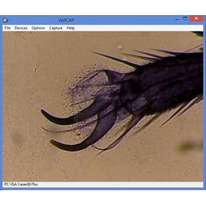 Omegon Mikroskop MonoView, MicroStar, achromat, 1280x, LED