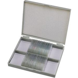Bresser Cassetta di legno con 30 preparati permanenti (umani)