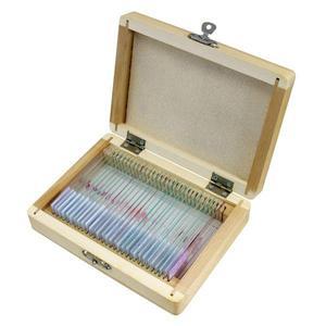 Bresser Cassetta di legno con 30 preparati permanenti (animali)