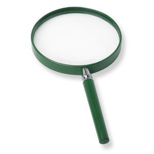 Carson BigEye 2.5X magnifying glass