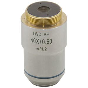 Optika Obiettivo M-784, planare acromatico per contrasto di fase 40x/0,60 LWD IOS per XDS-3