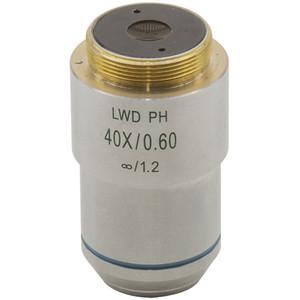 Optika Obiettivo M-786, 60x/0,70, LWD, IOS, plan, per XDS-3