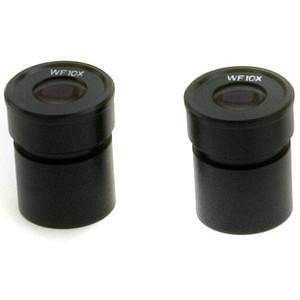 Optika Oculare Oculari (coppia) ST-002, WF10x/20mm per serie Stereo