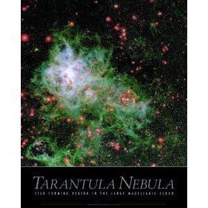 Poster Tarantula Nebula
