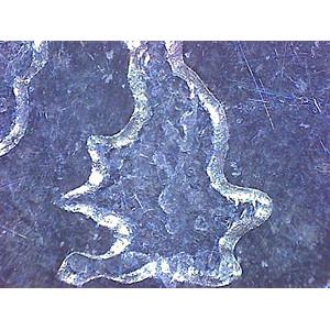 Omegon DigitalView Mikroskop ręczny USB