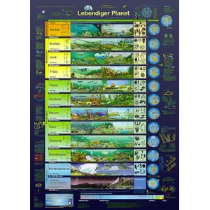 Planet Poster Editions Poster Lebendiger Planet