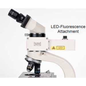 Hund Microscopio Medicus LED AFL FITC, binoculare