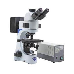 Optika Microscopio Mikroskop B-383FL-UK, trino, FL-HBO, B&G Filter, N-PLAN, IOS, 40x-1000x, UK