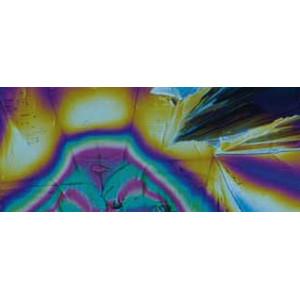 Motic Microscopio BA310  PH, bino, infinity, EC-plan, achro, 40x-1000x, LED 3W