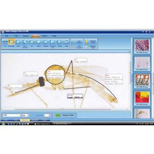 Motic Microscopio BA210, digitale
