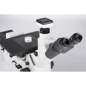 Motic Microscopio AE2000 MET, invertito, 50W, LM, trinoculare