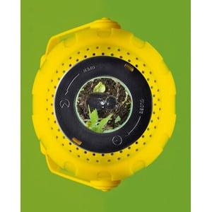 National Geographic set esplorazione terra e acqua
