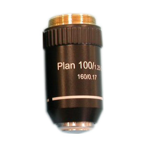 Hund Obiettivo Plan Acromatico 100x/1,25 per microscopi diritti
