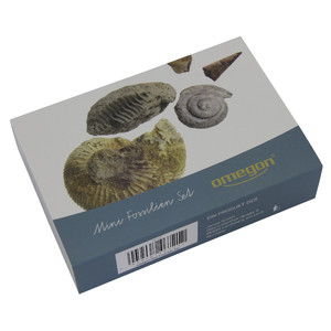 Omegon Microscopul stereoscopic Set StereoView, 80x, LED si fosile