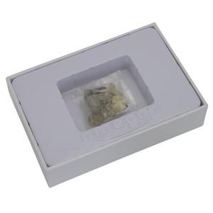 Omegon Mini set fosile