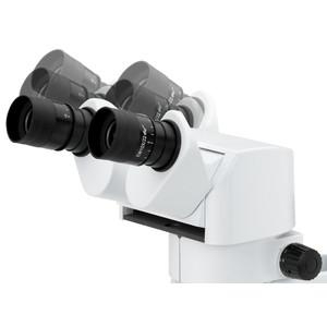 Euromex Stereomicroscopio DZ.1100, testata binoculare ergonomica, 8x-80x, LED