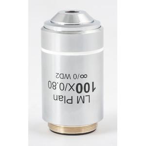 Motic Obiettivo 100x/0,8 (w.d.=2mm), CCIS LM plan achromat.