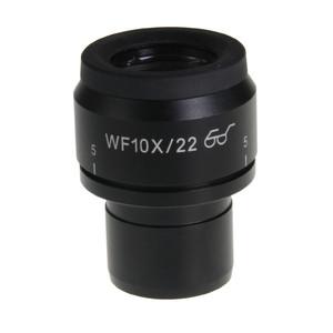 Euromex Oculare NZ.6110, 10x/22 per Nexius con micrometro, 1 pezzo