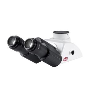 Motic BA310 Tête binoculaire, Siedenkopf