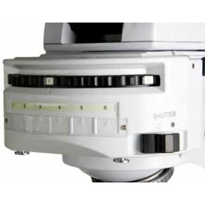 Euromex Microscopio iScope, IS.3152-EPLi/6, bino