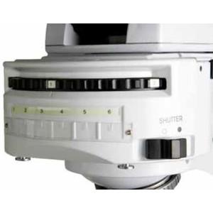 Euromex Microscopio iScope, IS.3153-PLFi/6, trino