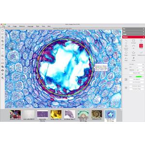 Motic Cámara cam 3+, 3MP, USB 3.0