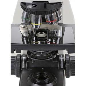 Euromex Microscopio DX.1158-PLi, trino, infinity, 10x/25,  plan, 40x - 1000x,  LED, 3W