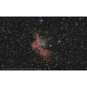 Bresser Telescopio N 203/800 Messier NT 203S Hexafoc OTA