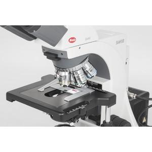 Motic Microscopio BA410 Elite, trino, Hal, 100W, 40x-1000x