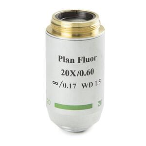 Euromex Obiettivo 86.554, 20x/0,60, w.d. 2,1 mm, PL-FL IOS , plan, fluarex (Oxion)