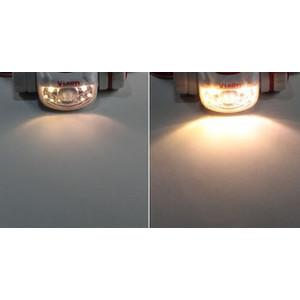Vixen Linterna frontal con luz roja y blanca, SG-L01