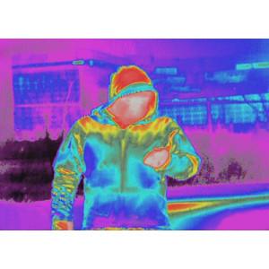Armasight Cámara térmica Prometheus C 336 2-8x25 (60 Hz)