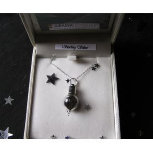 Jurassic Jewellery Stardust Meteorite Vial Necklace (Teardrop)