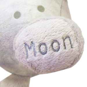 Celestial Buddies Luna
