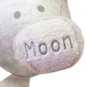 Celestial Buddies Moon