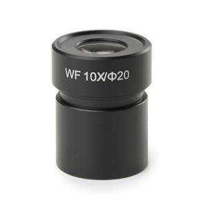 Euromex Oculare micrometrico ED.6110, EWF 10x/20, 10/100 mm, (1 pezzo) EduBlue