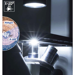 Optika Microscopio Mikroskop IM-3FL4-SWIV, trino, invers, FL-HBO, B&G Filter, IOS LWD U-PLAN F, 100x-400x, CH, IVD