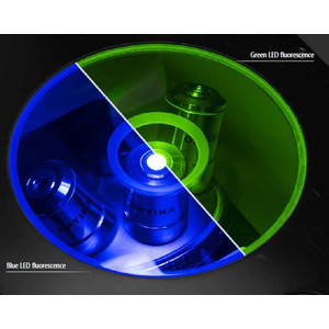 Optika Microscopio Mikroskop IM-3F-US, trino, invers, phase, FL-HBO, B&G Filter, IOS LWD W-PLAN, 40x-400x, US