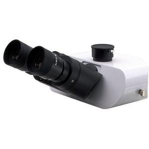 Optika testa microscopio M-1011, trino