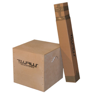 Télescope Dobson Taurus N 304/1500 T300-PP Classic Professional DOB