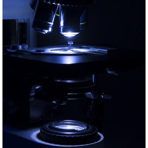 Microscope Optika B-1000, modèle 1, fond clair (sans objectif), trinoculaire