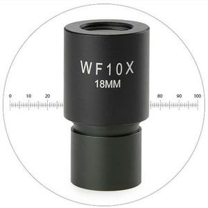 Euromex HWF 10x/18 mm, scala micrometrica, EC.6010-M (EcoBlue)