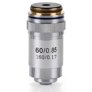 Euromex 60X/0.85 achro, DIN, sprung microscope objective, EC.7060 (EcoBlue)