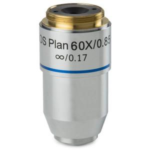 Euromex Obiettivo 60x/0,80 plan, a molla, corretto all'infinito, BB.7260 (BioBlue.lab)