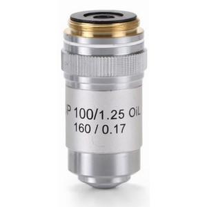 Euromex Obiettivo S100x/1,25 semiplan, a molla, immersione a olio AE.5601 (BioBlue)