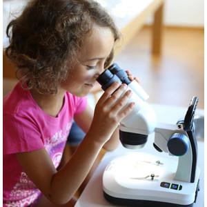 Optika Microscopio stereo 20x, 40x, stativo fisso, SFX-33