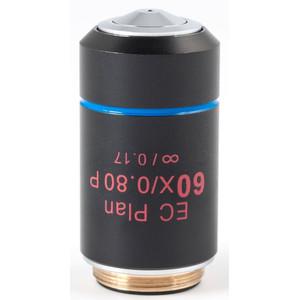 Motic Obiettivo EC PL P, CCIS, plan, achro, (spannungsfrei) 60x/0.80, S, w.d. 0.35mm (BA-310 POL)