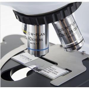 Optika Microscopio B-510-2F, discussion, trino, 2-head (face-to-face), IOS W-PLAN, 40x-1000x, EU